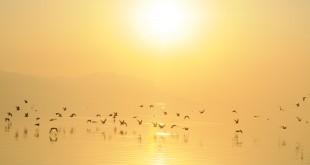 İznik Gölü - Engin Çakır