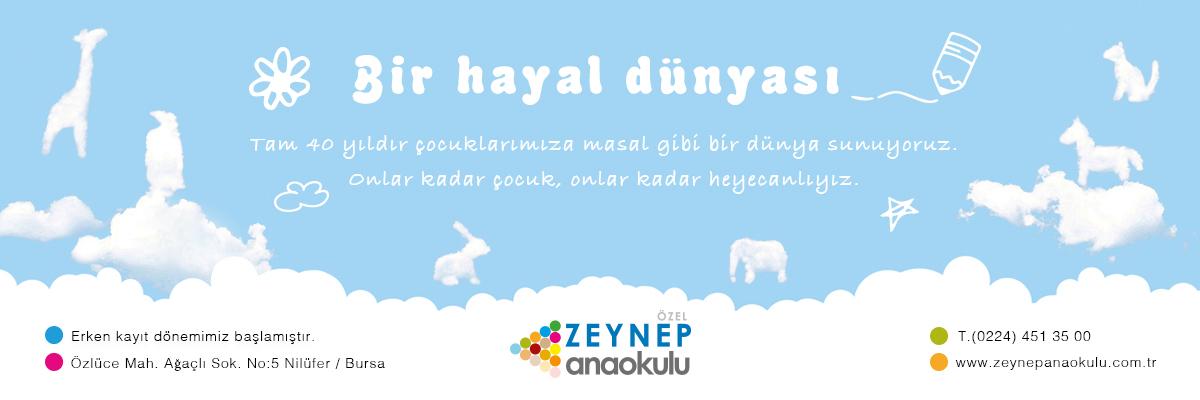 Zeynep Anaokulu